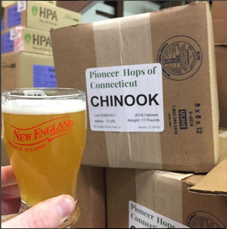 Pioneer Hops Chinook, now called CONNnook