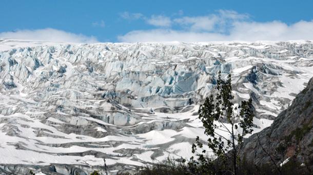 Glacier field, Alaska