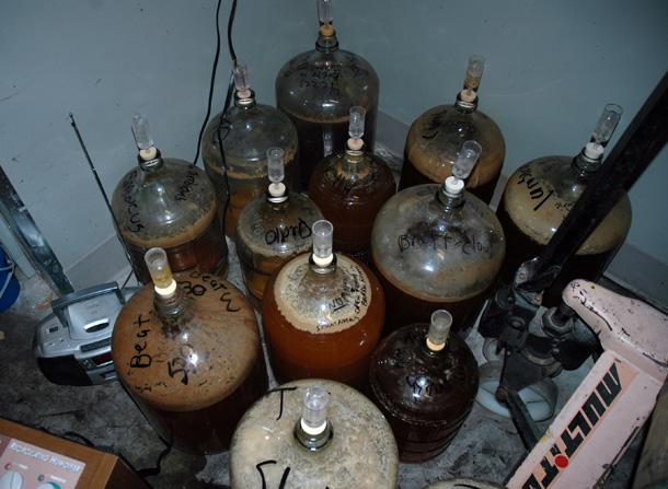 Russian River Brewing microbes - parts of original mixed culture